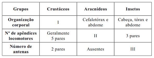 Resultado de imagem para No filo artrópoda, destacam-se três principais grupos: os crustáceos, os aracnídeos e os insetos. As principais características consideradas para essa divisão são: a organização corporal; o número de apêndices locomotores; a presença e o número de antenas, mostradas no quadro abaixo.