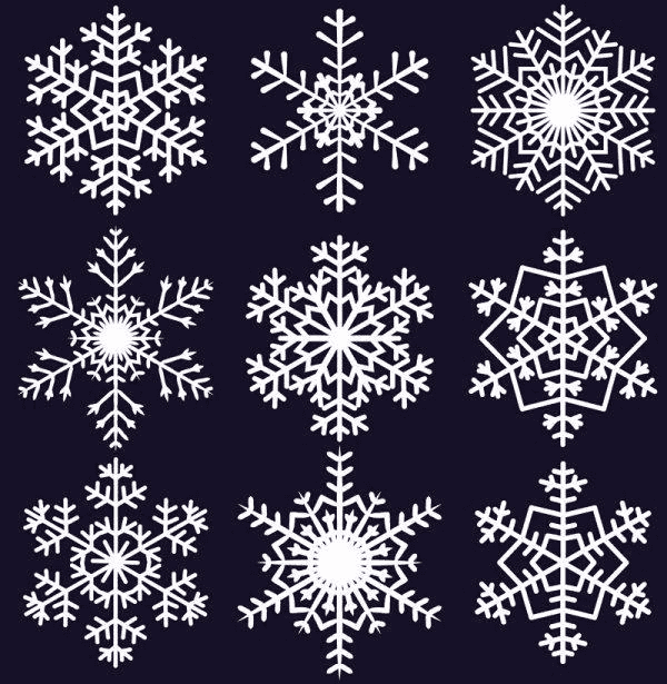 Different Snowflake pattern mix vector graphics 04